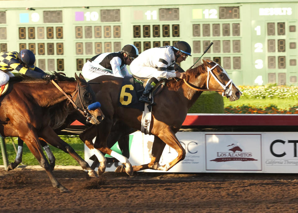 In this image provided by Benoit Photo, Willis D. Horton's Take Charge Brandi and jockey Victor Espinoza, right, win the Grade I $350,000 Starlet Stakes horse race on Saturday, Dec. 13, 2014, at Los Alamitos Race Course in Cypress, Calif. (AP Photo/Benoit Photo)