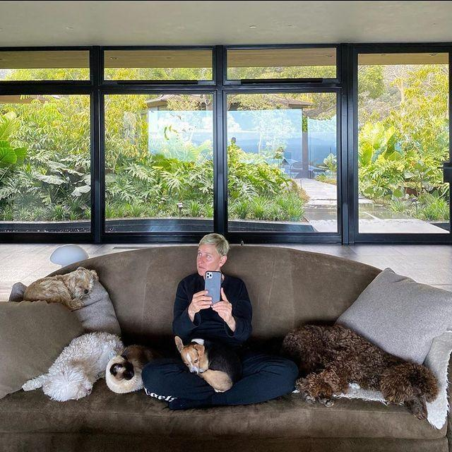 """<p>We're not sure what we love most, the presenter's spacious living room or her garden which looks like a mini jungle. What we do know is that those dogs are living their best lives.</p><p><a href=""""https://www.instagram.com/p/B-ko8UYDVjh/"""" rel=""""nofollow noopener"""" target=""""_blank"""" data-ylk=""""slk:See the original post on Instagram"""" class=""""link rapid-noclick-resp"""">See the original post on Instagram</a></p>"""