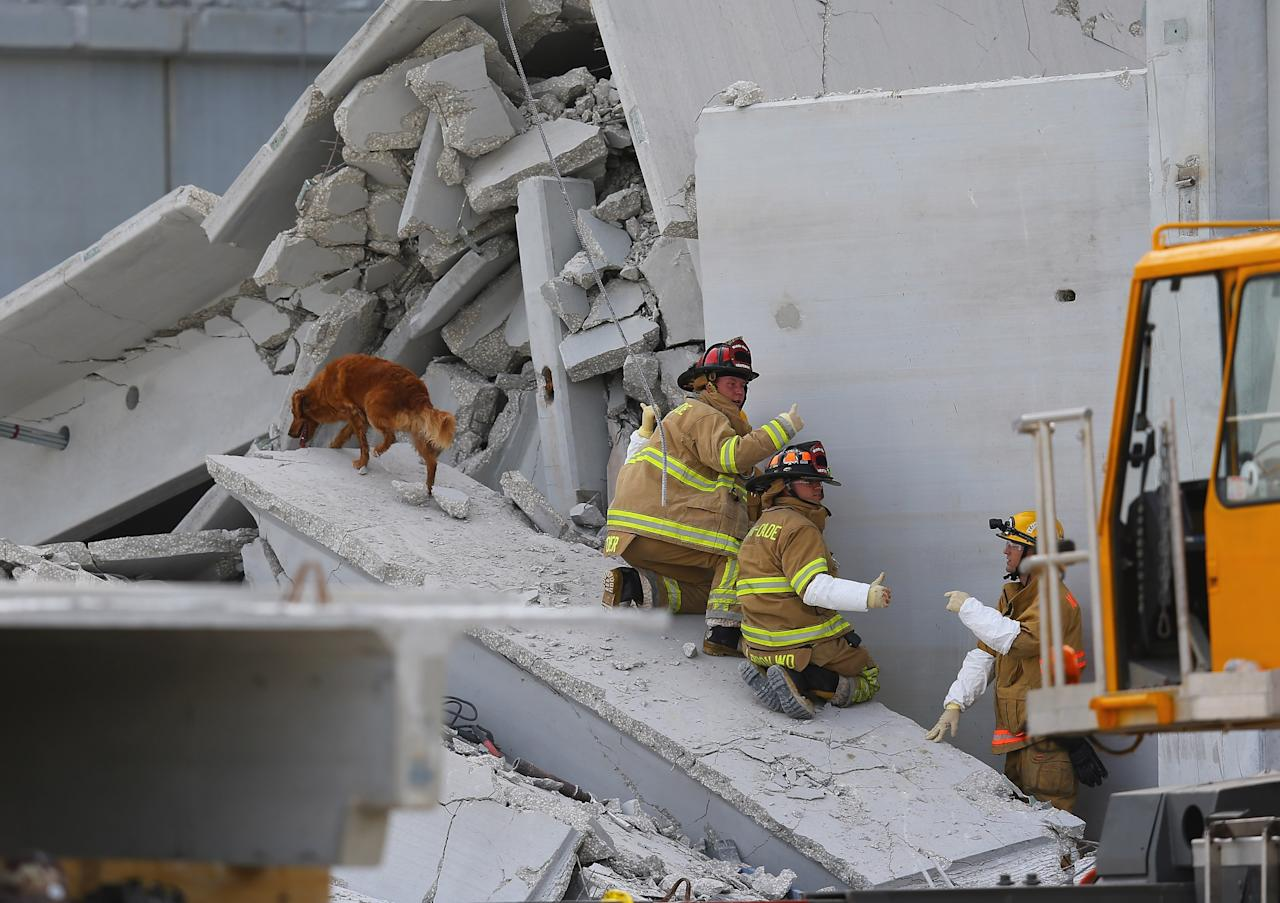 MIAMI, FL - OCTOBER 10:  Miami-Dade Rescue workers prepare to pull a body out of the rubble of a four-story parking garage that was under construction and collapsed at the Miami Dade College's West Campus on October 10, 2012 in Doral, Florida.  Early reports indicate that one person was killed, at least seven people injured and an unknown number of people may be buried in the rubble.  (Photo by Joe Raedle/Getty Images)