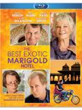 The Best Exotic Marigold Hotel Box Art