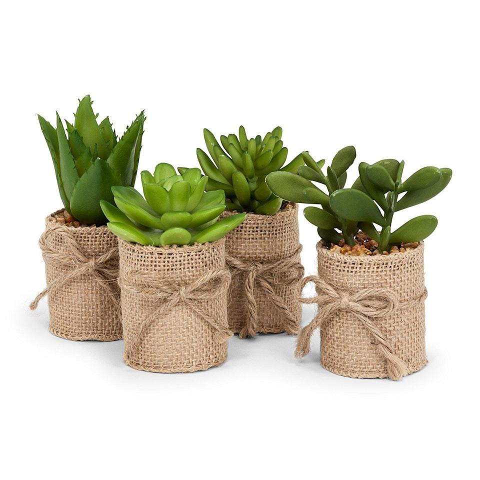 <p>Shop for faux plants that match your farmhouse-inspired decor by ordering the <span>Abbott Collection Succulents in Burlap Wrap</span> ($16). The set of four looks cute on shelves and tables and adds a pop of color to any room.</p>