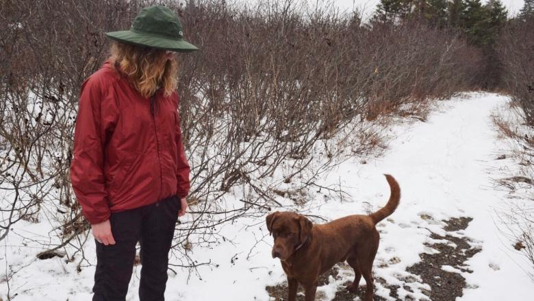 Literal trailblazing: Woman builds new trail to deter illegal dumping