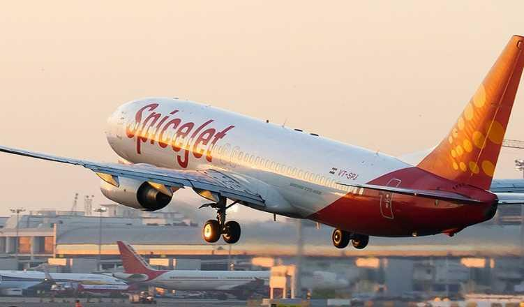SpiceJet launches 20 new domestic flights