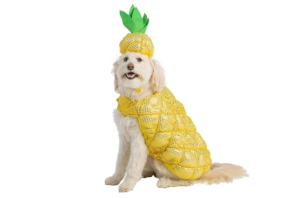 """<p>If pineapples are a sign of hospitality, then a dog in a pineapple costume may be the most welcoming sight ever. </p> <p><strong>Buy it!</strong> Pineapple Dog Costume, $19.99; <a href=""""https://www.petsmart.com/featured-shops/halloween/thrills-and-chillsandtrade-halloween-pineapple-dog-and-cat-costume-64293.html"""" rel=""""nofollow noopener"""" target=""""_blank"""" data-ylk=""""slk:PetSmart.com"""" class=""""link rapid-noclick-resp"""">PetSmart.com</a></p>"""