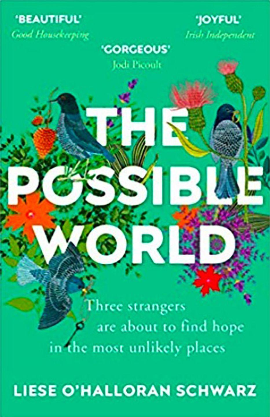 """<p><a class=""""link rapid-noclick-resp"""" href=""""https://www.amazon.co.uk/Possible-World-Liese-OHalloran-Schwarz/dp/1784757322/ref=sr_1_1?keywords=The+Possible+World+by+Liese+O%27Halloran+Schwarz+%28&qid=1567162272&s=gateway&sr=8-1&tag=hearstuk-yahoo-21&ascsubtag=%5Bartid%7C1919.g.15922606%5Bsrc%7Cyahoo-uk"""" rel=""""nofollow noopener"""" target=""""_blank"""" data-ylk=""""slk:SHOP NOW"""">SHOP NOW</a> £8.46, Amazon</p><p>Six-year-old Ben is the sole survivor of a crime which claims his mother. Lucy is the doctor who tends to the child while he recovers, while Clare is desperately trying to stop her lifetime of secrets from coming unstuck. As they all grapple with their own personal events, fate works to bring them together - proving you can find hope in the most unlikely places. </p>"""
