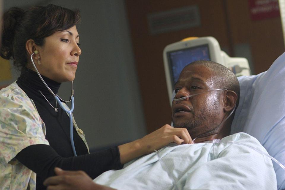 <p>In season 13, the ward welcomed Oscar winner Forest Whitaker for a six episode guest appearance. Whitaker played former patient, Curtis Ames, who intends to sue the hospital staff for malpractice. </p>