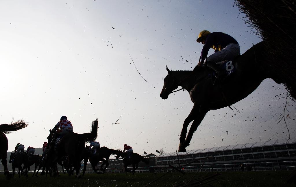 This year's Cheltenham Gold Cup, which brings the Cheltenham racing festival to a climax, takes place on March 17 (AFP Photo/Adrian DENNIS)