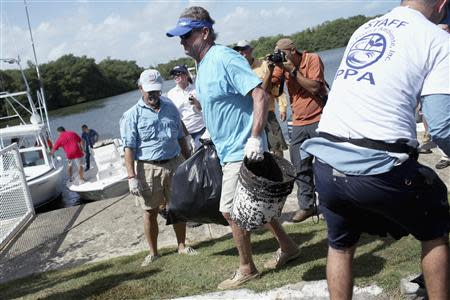 """U.S. artist and conservationist Guy Harvey (C) leads a group of volunteers along the San Juan estuary system for the second """"mega cleanup"""" of garbage from the waterway, in San Juan October 26, 2013. REUTERS/Alvin Baez"""