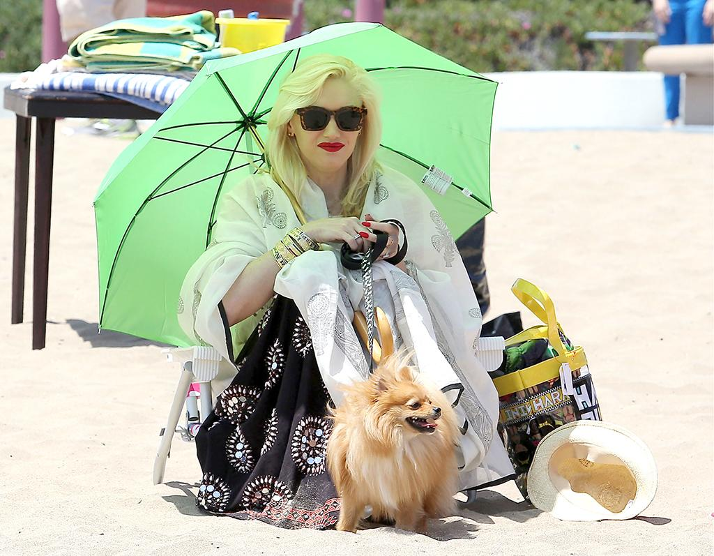 Well, you can't say Gwen Stefani isn't concerned about sun protection. The songstress donned lots of layers and sat under a handheld umbrella (accompanied by her cute pup) when she took her sons to a birthday party on the beach in Marina del Rey, California, on Saturday. (5/18/2013) <br /><br />