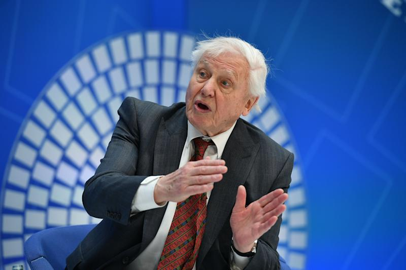 Broadcaster and natural historian David Attenborough takes part in a discussion on nature and the economy during the IMF - World Bank Spring Meetings at International Monetary Fund Headquarters. (Credit: MANDEL NGAN/AFP/Getty Images)