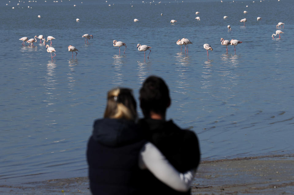 A couple stand at the edge of the salt lake and watch the flamingos, in the background, in southern coastal city of Larnaca, in the eastern Mediterranean island of Cyprus, Sunday, Jan. 31, 2021. Conservationists in Cyprus are urging authorities to expand a hunting ban throughout a coastal salt lake network amid concerns that migrating flamingos could potentially swallow lethal quantities of lead shotgun pellets. (AP Photo/Petros Karadjias)