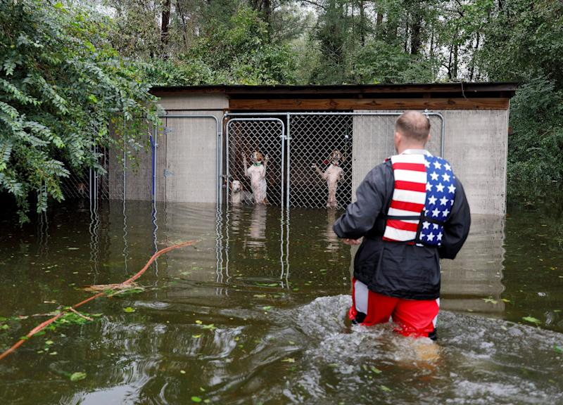 Panicked dogs who were left caged by an owner who fled rising flood waters in the aftermath of Hurricane Florence, are rescued by volunteer rescuer Ryan Nichols of Longview, Texas, in Leland, North Carolina.