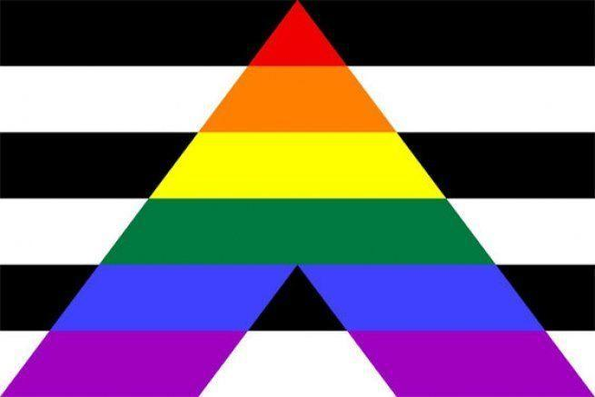 <p>This is a combination of different symbols—the straight flag is black and white stripes, the traditional pride flag is a rainbow—and the combination is meant to show allyship for the LGBTQ+ community. </p>