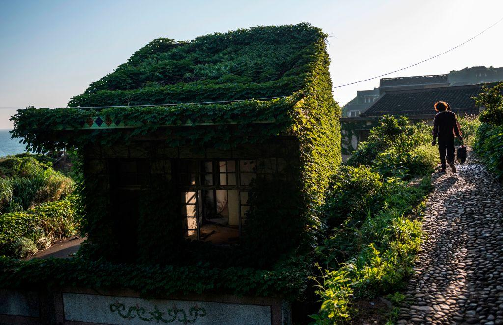 <p>China's rampant development has sent nature into full retreat, but in one village the countryside has crept back to reclaim lost ground. </p>