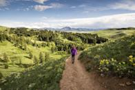 "<p>Get outside and enjoy some fresh air with your mom leading the way. Whether you go for a long hike or a short walk, it will feel great to get out and get moving—especially before you enjoy plenty of <a href=""https://www.countryliving.com/food-drinks/g4238/mothers-day-desserts/"" rel=""nofollow noopener"" target=""_blank"" data-ylk=""slk:Mother's Day desserts"" class=""link rapid-noclick-resp"">Mother's Day desserts</a>. </p>"