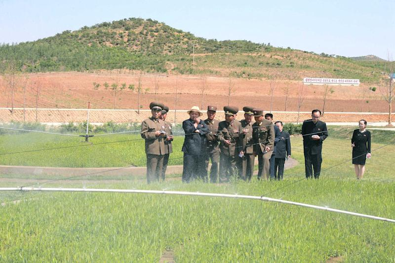 North Korean leader Kim Jong-un gives field guidance at a new tree nursery run by the military in this undated photo released by North Korea's Korean Central News Agency (KCNA) in Pyongyang May 29, 2015. REUTERS/KCNA   THIS IMAGE HAS BEEN SUPPLIED BY A THIRD PARTY. IT IS DISTRIBUTED, EXACTLY AS RECEIVED BY REUTERS, AS A SERVICE TO CLIENTS NO THIRD PARTY SALES. NOT FOR USE BY REUTERS THIRD PARTY DISTRIBUTORS SOUTH KOREA OUT. NO COMMERCIAL OR EDITORIAL SALES IN SOUTH KOREA