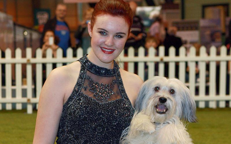 <p>Six seasons down the line, Ashleigh and Pudsey reached the final to become the first dog act to win the talent show.</p><p>Ashleigh and her pet dog Pudsey stole the hearts of the nation when they trotted around the stage to 'The Flintstones' soundtrack.</p><p>After winning the show and performing at the Royal Variety, the dancing duo have performed in several pantomimes and theatre productions.</p><p>In 2012, Pudsey's official autobiography was released as part of a reported £100,000 book deal.</p><p>Shortly after, the canine's big screen debut 'Pudsey the Dog: The Movie' hit cinemas.</p><p><i>Picture Credit: Graham Stone/REX/Shutterstock</i></p>
