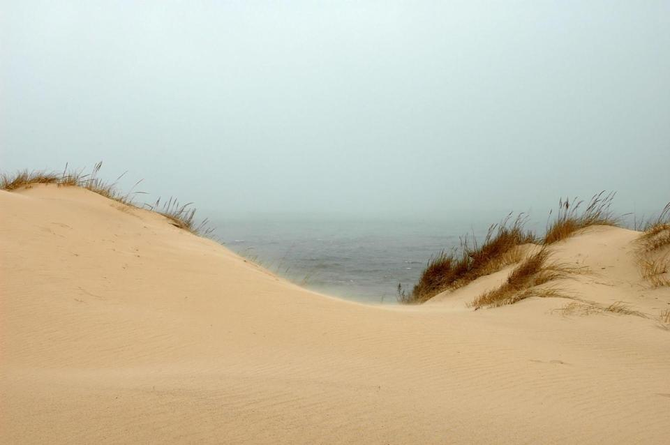 <p>Indiana Dunes is one of the newest National Parks in the system, with its large sandy bluffs along the coast of Lake Michigan. </p>
