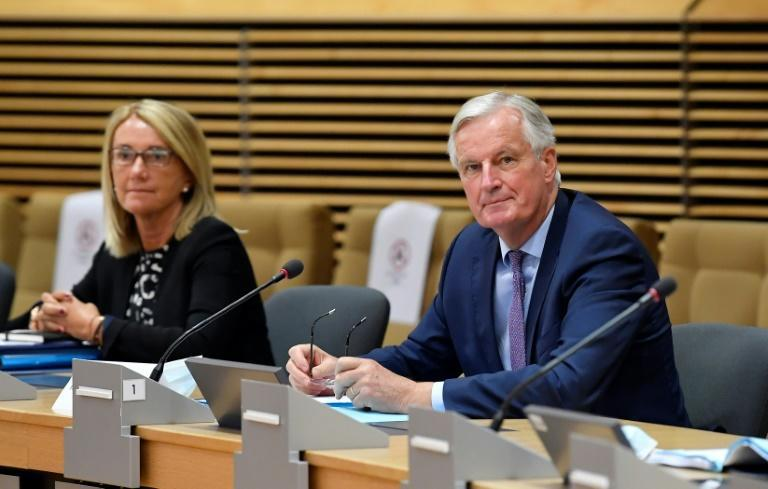 EU Brexit negotiator Michel Barnier said after last week's negotiations that 'serious divergences remain' as time slips away