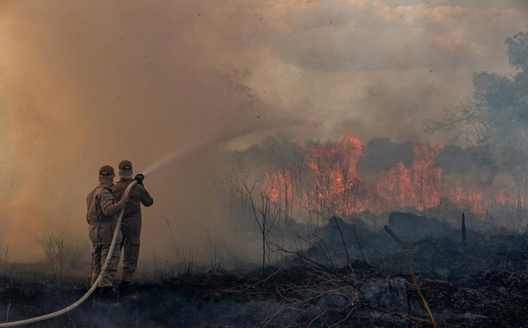 Firefighters in the Brazilian Amazon basin state of Mato Grosso battle a forest blaze in the municipality of Sorriso (AFP Photo/Mayke TOSCANO)