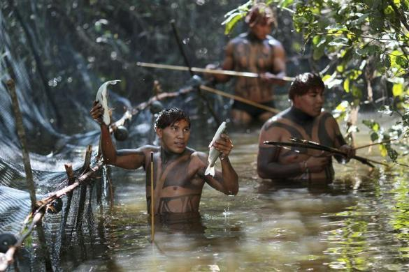 Yawalapiti tribe members catch fish in the Xingu National Park, Mato Grosso State, Brazil, May 7, 2012.