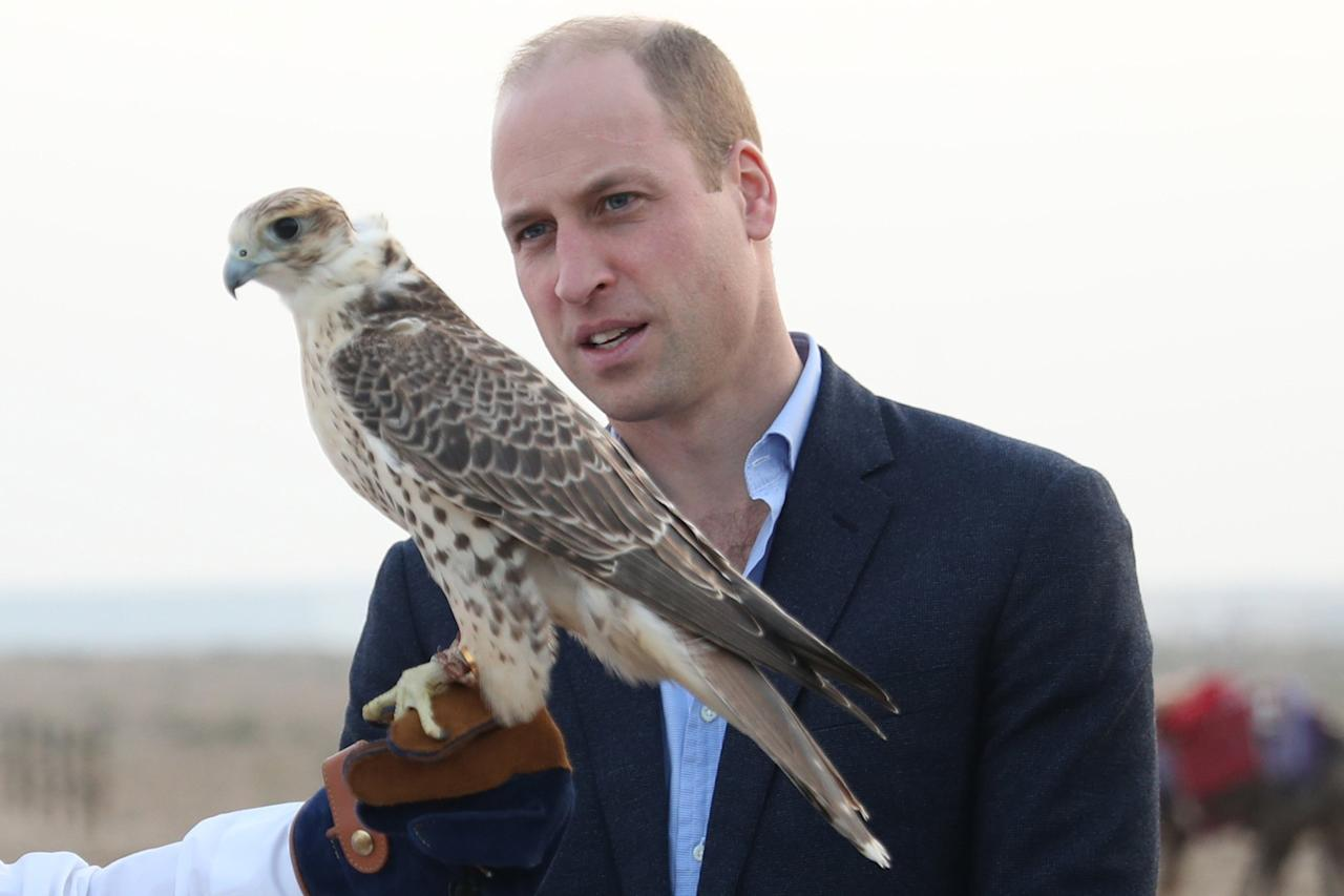 The Queen's grandson studied the wetlands' wildlife, including identifying some of the 300 species of birds seen at the reserve.