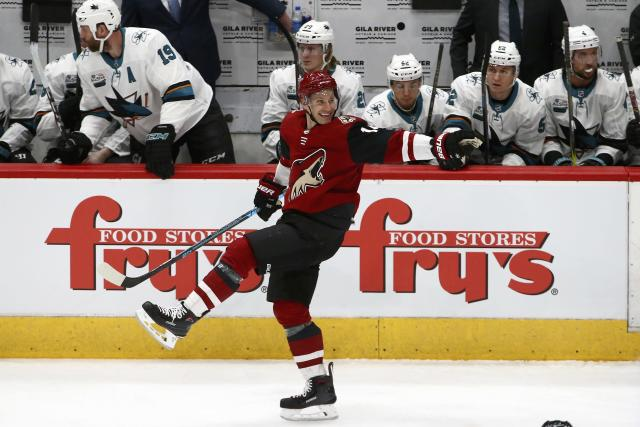 Arizona Coyotes right wing Richard Panik celebrates his goal against the San Jose Sharks during the first period of an NHL hockey game Wednesday, Jan. 16, 2019, in Glendale, Ariz. (AP Photo/Ross D. Franklin)