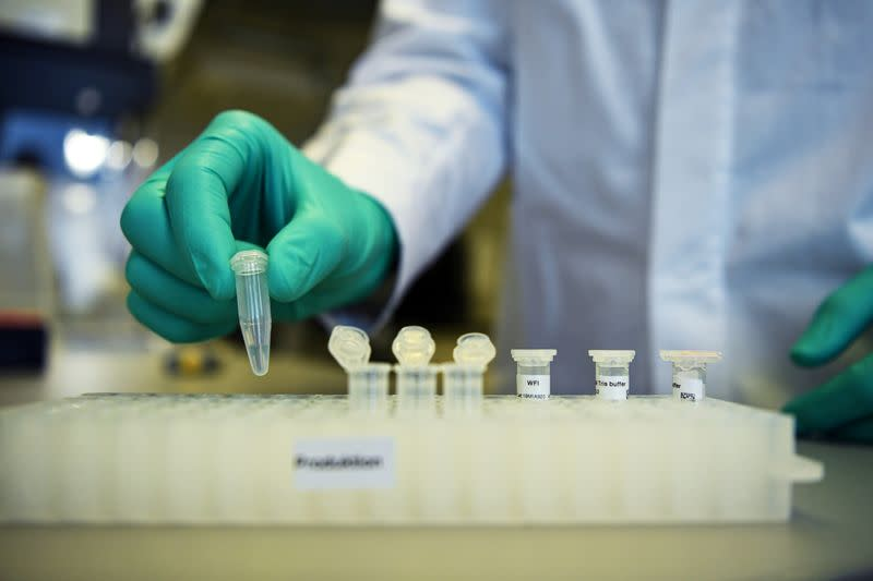FILE PHOTO: Employee Philipp Hoffmann, of German biopharmaceutical company CureVac, demonstrates research workflow on a vaccine for the coronavirus (COVID-19) disease at a laboratory in Tuebingen