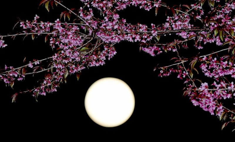 China Plans to Launch 'Artificial Moon' to Replace Street Lights