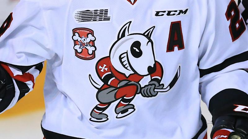 OHL's Niagara IceDogs pay tribute to injured goaltender Tucker Tynan