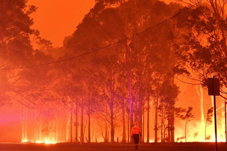 The Australian wildfires were some of the worst on record (AFP/SAEED KHAN)