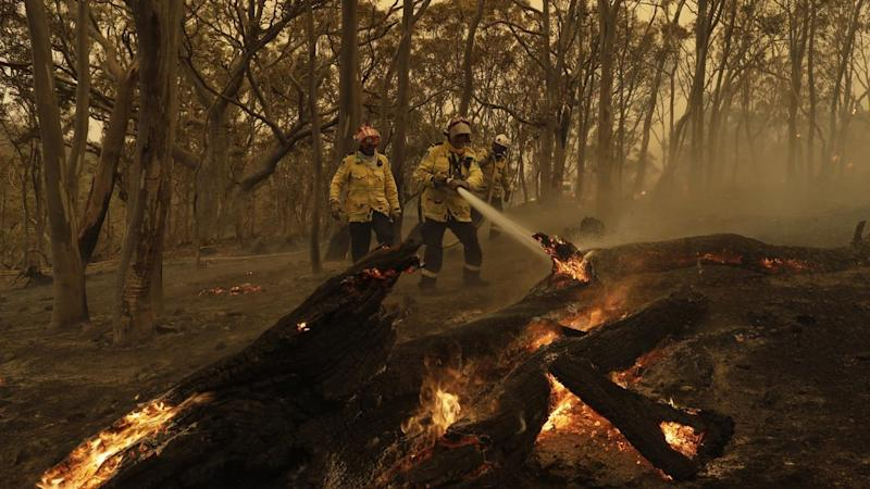 Very high fire danger is forecast for multiple NSW regions, including greater Sydney