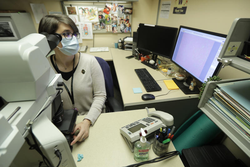 """Dr. Desiree Marshall, director of Autopsy and After Death Services for University of Washington Medicine, uses a microscope to examine tissues from a person who died of COVID-19 related complications, as she works in her office, Tuesday, July 14, 2020, in Seattle. Autopsies reveal """"what the virus is actually doing"""" inside patient's bodies, says Marshall. (AP Photo/Ted S. Warren)"""