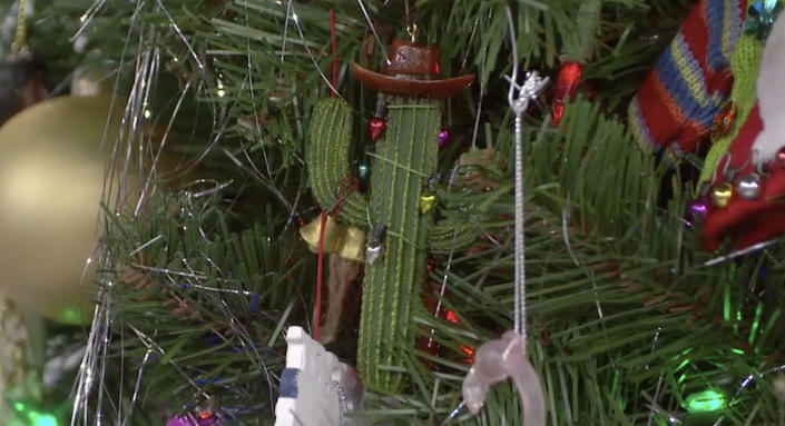A cactus tree on a Christmas tree? Why not! (TODAY)