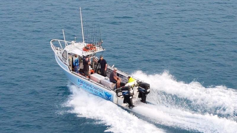 A whale has slammed into a charter boat in the Whitsundays, knocking two fishermen unconscious.