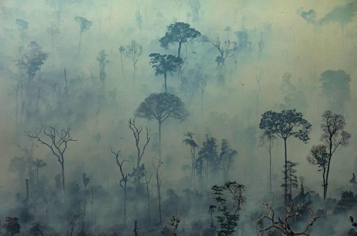 Tens of thousands of fires have ravaged the world's largest tropical rainforest this year, raising questions about how the world would survive without the Amazon.