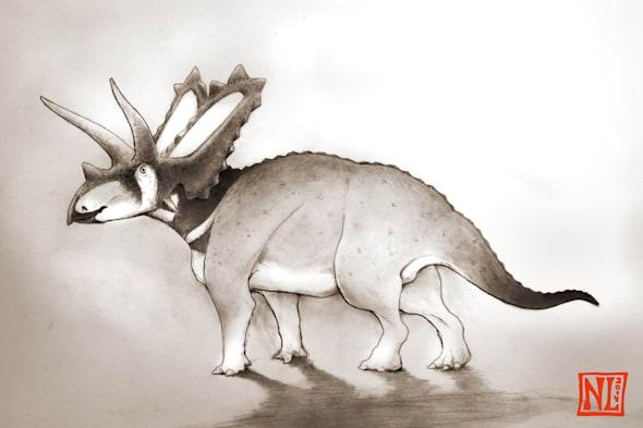 New dinosaur species discovered in Canadian museum