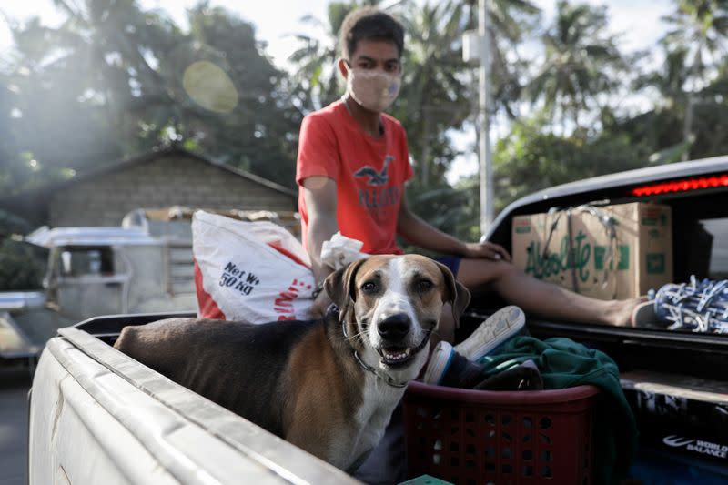 A dog is carried on a truck as residents affected by the erupting Taal Volcano are temporarily allowed to collect belongings and abandoned animals from their homes in Agoncillo