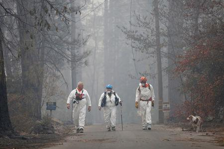 Trish Moutard (C), of Sacramento, and other volunteers search for human remains with Moutard's cadaver dog, I.C., in a neighborhood destroyed by the Camp Fire in Paradise, California, U.S., November 14, 2018.  REUTERS/Terray Sylvester