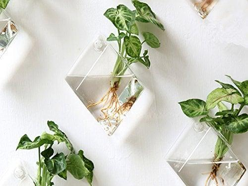<p>These <span>Mkono Wall Hanging Plant Terrarium Glass Planters (Set of 2)</span> ($16) look great and take very little space.</p>