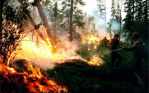 Firefighters battle a Siberian wildfire in August. The vast majority are simply allowed to burn - Credit: RUSSIAN FEDERATION SERVICE AVIATION FOREST PROTECTION/HANDOUT/EPA-EFE/REX