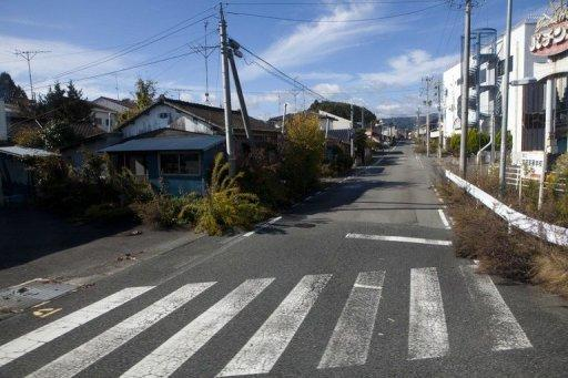 Photo illustration shows a deserted street in the contaminated exclusion zone around Japan's crippled Fukushima Daiichi nuclear power plant in November 2011. Genetic mutations have been found in three generations of butterflies from near the Fukushima nuclear plant, raising fears radiation could affect other species