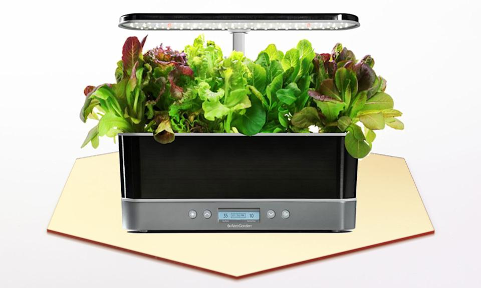 Holiday Gift Guide: Aerogarden Harvest Elite Slim