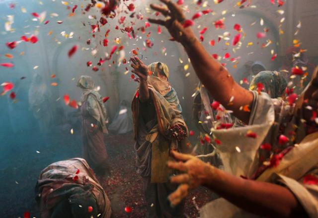 Indian Hindu widows throw flowers as part of Holi celebrations organized by the NGO Sulabh at the Meera Sahbhagini Ashram in Vrindavan, India, Wednesday, March 27, 2013. The widows, many of whom at times have lived desperate lives in the streets of the temple town, celebrated the festival for the first time at the century old ashram. After their husband's deaths the women have been banished by their families to the town where devotees believe Lord Krishna was born, for supposedly bringing bad luck. (AP Photo/Kevin Frayer)