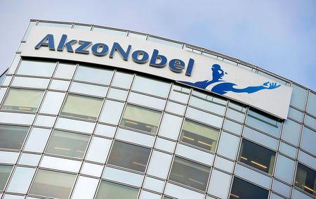 PPG abandons pursuit of Dulux firm AkzoNobel