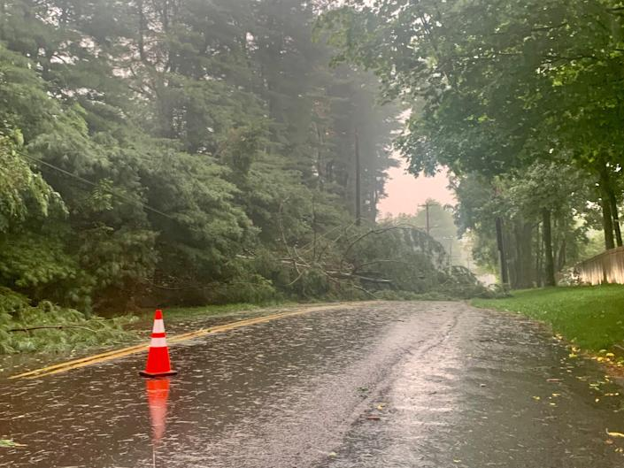 A felled tree blocks Aquetong Road in Solebury Thursday evening after a tornado ripped through the area. The road was blocked off to traffic between Mechanicsville Road and State Route 263 as emergency workers dealt with the storm.