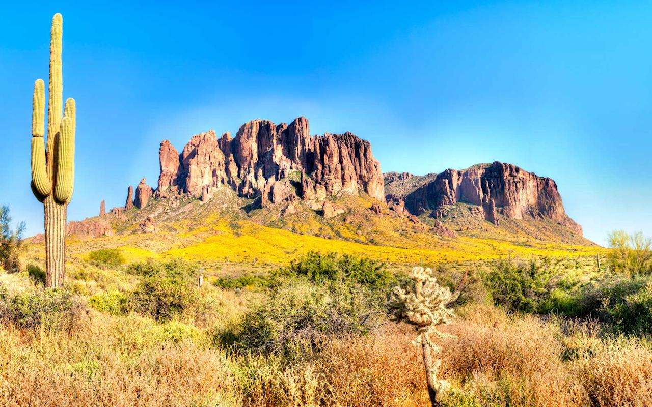 "<p>The spellbinding beauty of the Sonoran Desert — one of the most bio-diverse deserts in the world — comes to life on this <a rel=""nofollow"" href=""http://www.butterfield.com/trip/scottsdale-great-adventure/?utm_source=TravelLeisure&utm_medium=Webpage&utm_campaign=TravelLeisureWebpage"">epic journey</a> in the heart of the American Southwest. Outdoor adventures include rafting and kayaking on the Salt River, cycling through the desert itself, and then taking a thrilling flight over the <a rel=""nofollow"" href=""http://www.travelandleisure.com/trip-ideas/national-parks/grand-canyon-national-park"">Grand Canyon</a>. Your luxurious home base: the Four Seasons Resort Scottsdale at Troon North. <em>Five days from $8,195 per person.</em></p>"