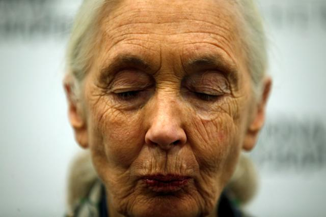 Jane Goodall turns 84 next month, but she has no plans to slow down.