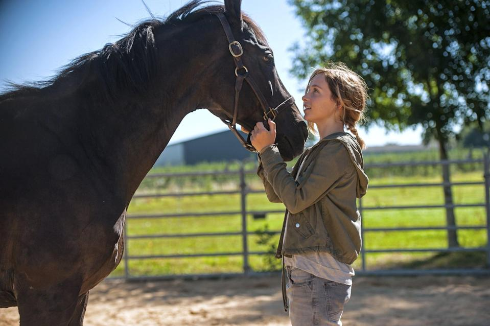 """<p>In this German drama, a 17-year-old with a congenital heart defect defies her limits by becoming a thrill seeker, leading her to form a bond with a rowdy black stallion whom she hopes to race despite her parents' discouragement. Watch <a href=""""http://www.netflix.com/title/81051688"""" class=""""link rapid-noclick-resp"""" rel=""""nofollow noopener"""" target=""""_blank"""" data-ylk=""""slk:Rock My Heart""""><strong>Rock My Heart</strong></a> on Netflix now.</p>"""