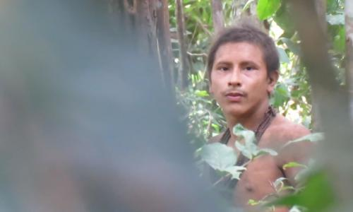 Video of uncontacted Amazon tribe highlights threat from illegal loggers